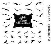 set of bird silhouettes. black... | Shutterstock . vector #334644050