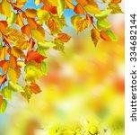 autumn foliage. autumn time.... | Shutterstock . vector #334682144