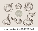garlic hand draw sketch  vector | Shutterstock .eps vector #334772564