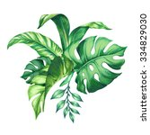 watercolor tropical green... | Shutterstock . vector #334829030