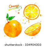 hand drawn watercolor half ... | Shutterstock . vector #334904303