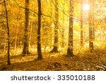 beautiful bright golden sun...   Shutterstock . vector #335010188