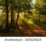 Autumn Sunset Light Up...