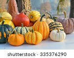 varieties of pumpkins and... | Shutterstock . vector #335376290