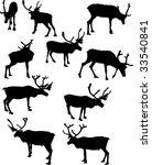 illustration with deer... | Shutterstock . vector #33540841