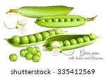 green peas. vector illustration | Shutterstock .eps vector #335412569
