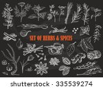 set of herbs and spices in... | Shutterstock .eps vector #335539274