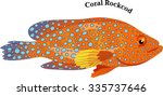 marine fish  coral rockcod  | Shutterstock .eps vector #335737646