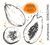 papaya. set of hand drawn... | Shutterstock .eps vector #335821940