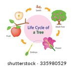 this picture shows the life... | Shutterstock .eps vector #335980529