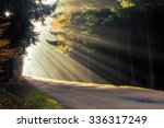 Road Covered With Sun Rays
