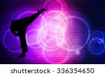 sport  karate | Shutterstock . vector #336354650