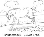 coloring book with a kicking... | Shutterstock .eps vector #336356756