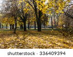 Small photo of Sunny day in autumn park. Indian summer, gossamer, martinmas summer. Horizontal image.