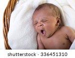 african american infant | Shutterstock . vector #336451310