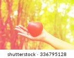 heart in hands on nature... | Shutterstock . vector #336795128