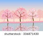 Spring Season Of Sakura Cherry...