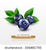 three blueberries with green... | Shutterstock .eps vector #336881750