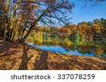 Colorful Leaves On Trees Along...
