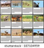 Wildlife Calendar 2016 Page...