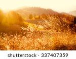 majestic field in the sunlight. ...   Shutterstock . vector #337407359