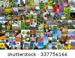 Symmetric Mosaic Mix Collage Of ...