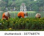 asian gardener taking care of... | Shutterstock . vector #337768574