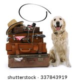 Dog And  Suitcases With Empty...