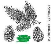 Vector Hand Drawn Botanical...