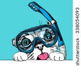 portrait of a funny cat in...   Shutterstock .eps vector #338054093