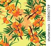 seamless pattern sea buckthorn. ... | Shutterstock .eps vector #338061719