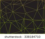 abstract colorful outline of... | Shutterstock .eps vector #338184710