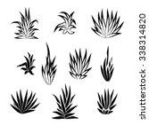 set of succulent plant  flower...   Shutterstock .eps vector #338314820