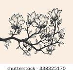 magnolia blossom tree branch.... | Shutterstock .eps vector #338325170