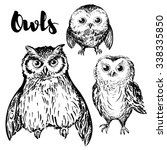 Stock vector owl hand drawn black and white isolated vector illustration set of a three birds 338335850