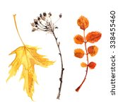 autumn leaves painted with... | Shutterstock . vector #338455460