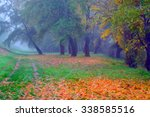 landscape painting showing... | Shutterstock . vector #338585516