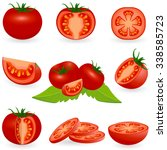 vector illustration of tomato... | Shutterstock .eps vector #338585723