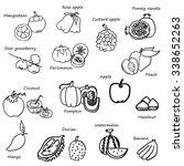 fruit sketch in black doodle...   Shutterstock .eps vector #338652263