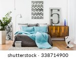 image of spacious bedroom with... | Shutterstock . vector #338714900