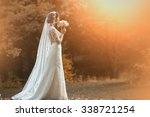 full length side view of one... | Shutterstock . vector #338721254