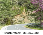 Serpentine highway turn with blossoming Cercis siliquastrum (Judas tree) on roadside. Cyprus.