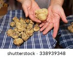 Small photo of prized truffle of Tuscany valley d'Orcia Italy