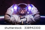 Stock photo beautiful cat in outer space elements of this image furnished by nasa 338942333