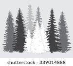 vector set of coniferous trees... | Shutterstock .eps vector #339014888