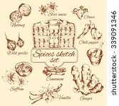 spices sketch set with nutmeg... | Shutterstock .eps vector #339091346