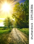 dirt road in a sunny spring... | Shutterstock . vector #339138386