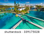 gold coast  aus   jul 21 2015 ... | Shutterstock . vector #339175028