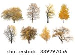 autumn trees isolated on white...
