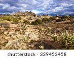A Desert Landscape In The...